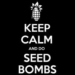 Keep calm and do seed bombs