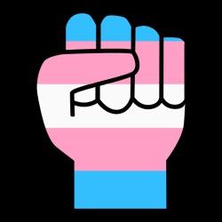 Transgender Raised Fist