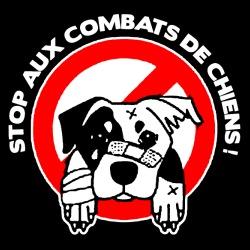 Stop aux combats de chiens!