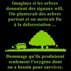 Imaginez si les arbes donnaient des signaux wifi. On planterait des arbres partout et on mettrait fin à la déforestation... Dommage qu\'ils produisent seulement l\'oxygène dont on a besoin pour survivre.
