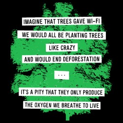 Imagine that trees gave wi-fi we would all be planting trees like crazy and would end deforestation... it\'s a pity that they only produce the oxygen we breathe to live