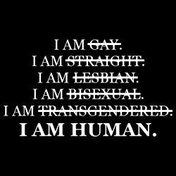 Gay? Straight? Lesbian? Transgendered? I am human.