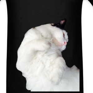 Sleeping Cat - Men's T-Shirt