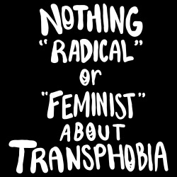 Nothing radical or feminist about transphobia