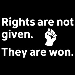 Rights are not given. They are won.