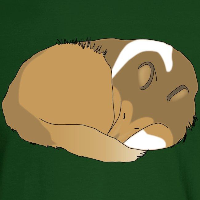 Sleeping Holly