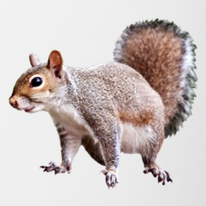 squirrel clipart 2 - Contrast Coffee Mug