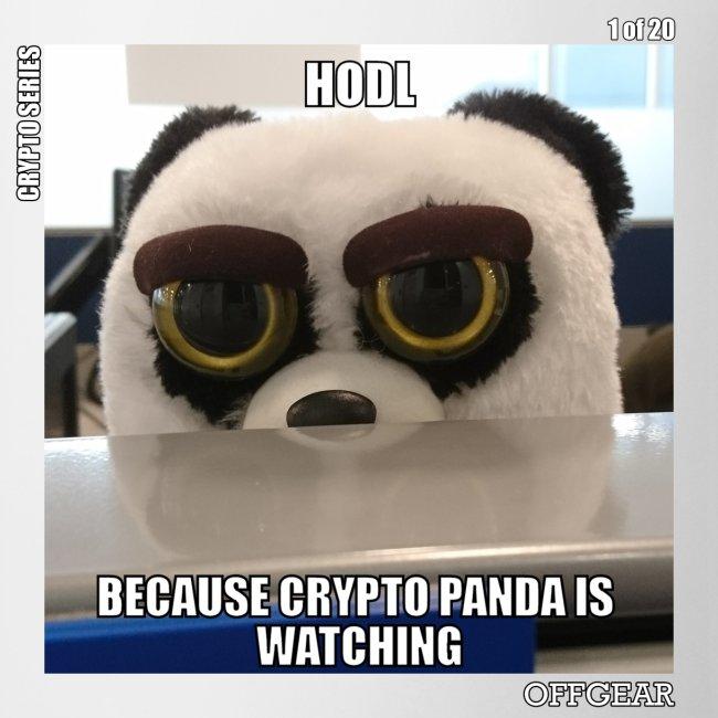 Crypto Panda Is Watching (Crypto Series)