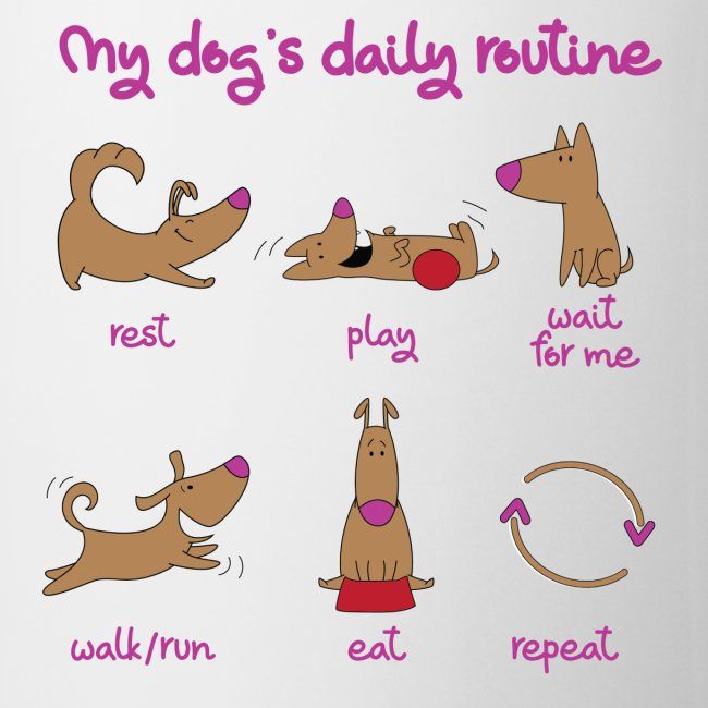 My Dogs daily routine