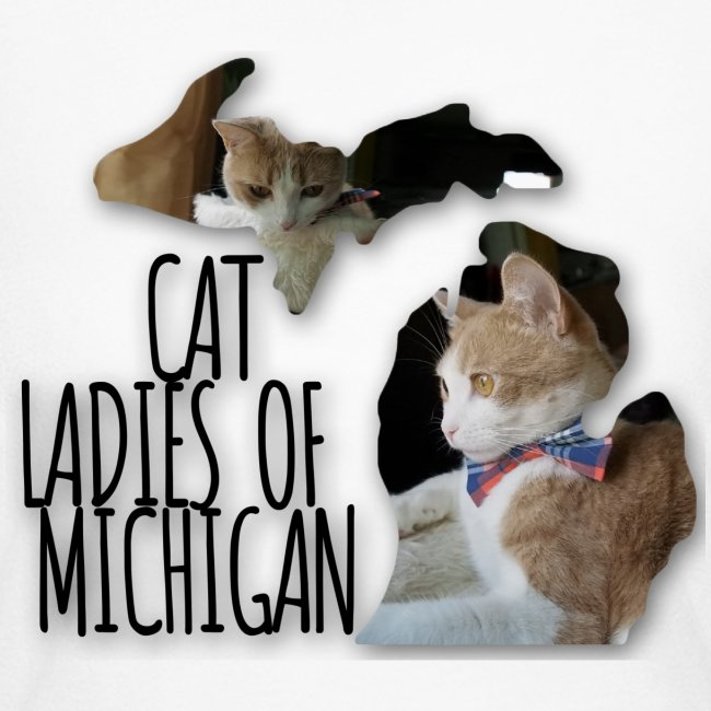 Cat Ladies of Michigan