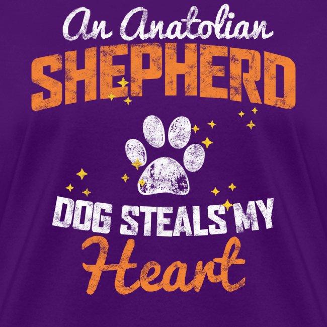AN ANATOLIAN SHEPHERD DOG STEALS MY HEART
