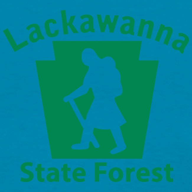 Lackawanna State Forest Keystone Hiker female