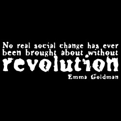 No real social change has ever been brought about without revolution (Emma Goldman)