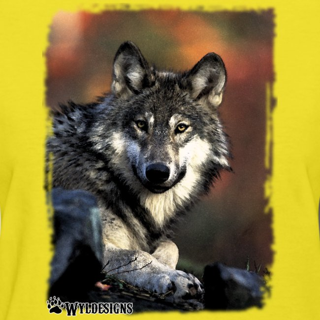 Wolf s Gaze