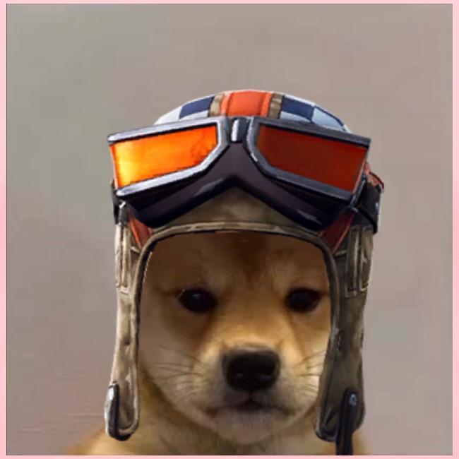 Renegade Doggo
