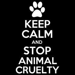 Keep calm and stop animal cruelty