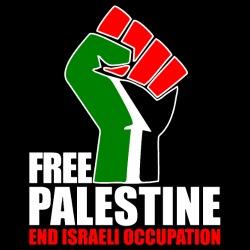 Free palestine end israeli occupation