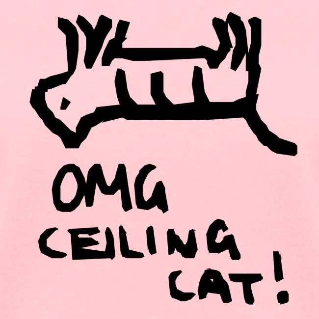 Ceiling Cat Logo