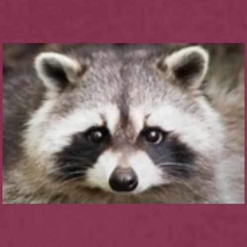 Be a Raccoon - Women's Premium Hoodie