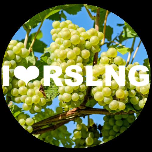 RSLNG - I love RSLNG - Riesling Grapes - Women's Premium Hoodie
