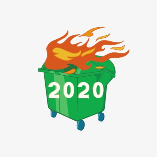 2020 Dumpster Fire - Women's Premium Hoodie