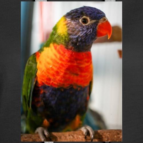 rainbow lorriket - Women's Premium Hoodie