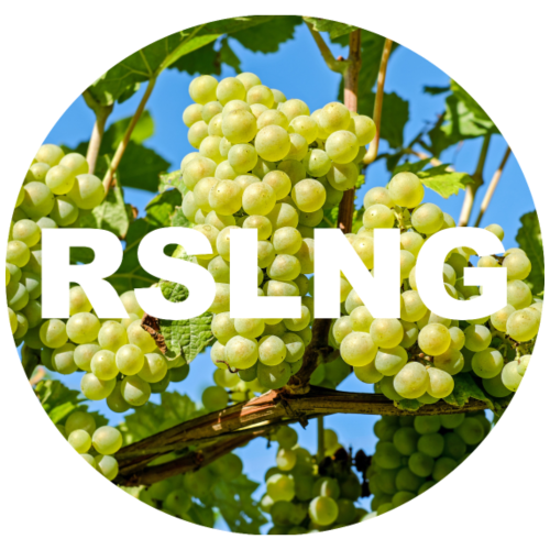 RSLNG - Riesling grapes - Women's Premium Hoodie