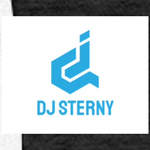 dj sterny logo - Women's Premium Hoodie