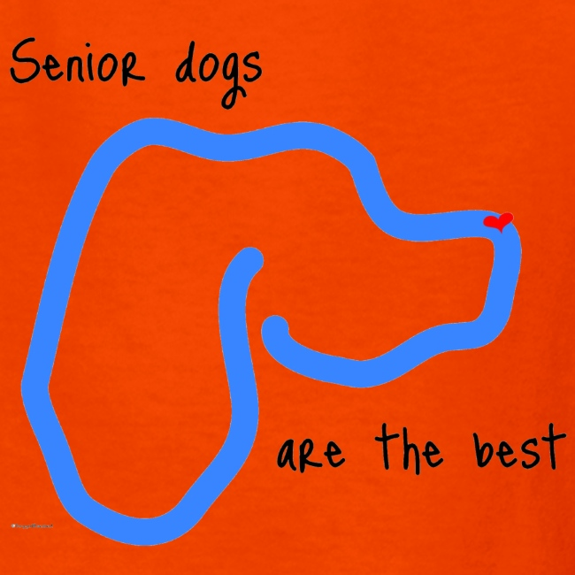 Senior Dogs are the Best