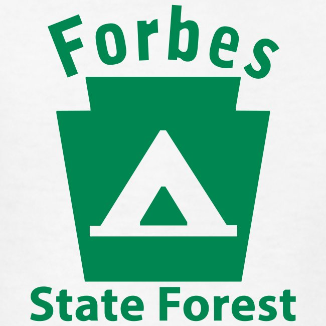 Forbes State Forest Camping Keystone PA