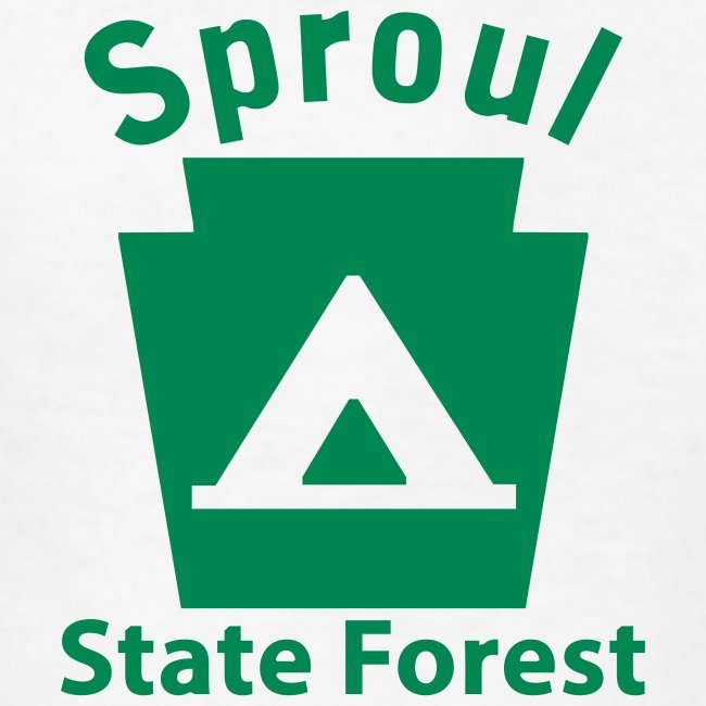 Sproul State Forest Camping Keystone PA
