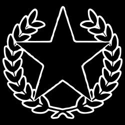 Revolutionary Star