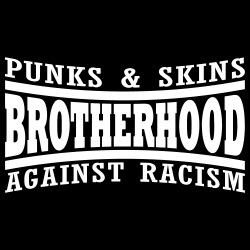 Punks & skins brotherhood against racism