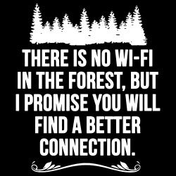 There is no wi-fi in the forest, but i promise you will find a better connection