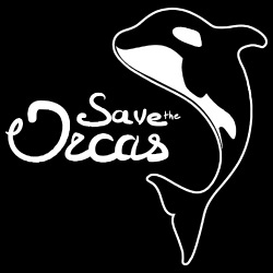 Save the orcas
