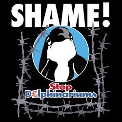 Stop delphinariums - Shame!