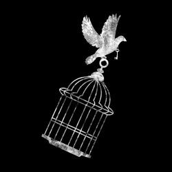 Animal Liberation Kids t-shirt