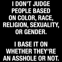 I don\'t judge people based on color, race, religion, sexuality, or gender. I base it on whether they\'re an asshole or not.