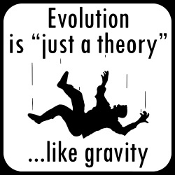 Evolution is \'\'just a theory\'\' ...like gravity
