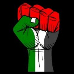 Palestine Raised Fist