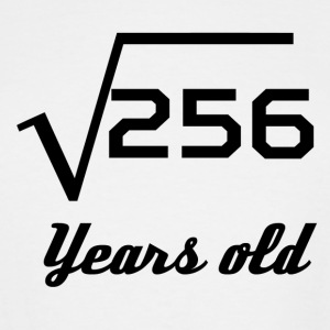 Square Root Of 256 16 Years Old - Men's Tall T-Shirt