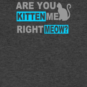 Are You Kitten Me Right Meow - Men's V-Neck T-Shirt by Canvas