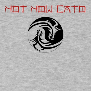 Not Now Cato - Men's V-Neck T-Shirt by Canvas