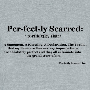 Perfectly Defined - Unisex Tri-Blend T-Shirt by American Apparel