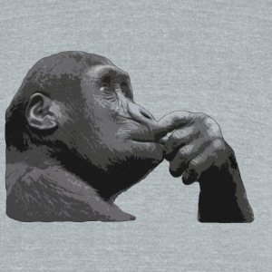 Thinking Ape - Unisex Tri-Blend T-Shirt by American Apparel