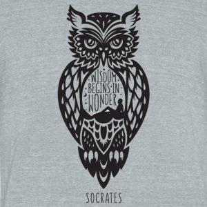WISDOM - Unisex Tri-Blend T-Shirt by American Apparel