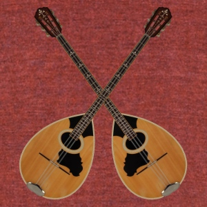 bouzouki 6 strings - Unisex Tri-Blend T-Shirt by American Apparel