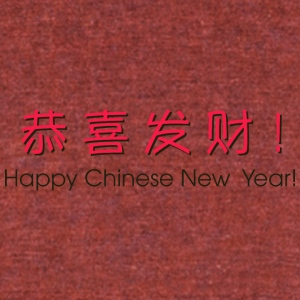 chinese_new_year_in_chine_2 - Unisex Tri-Blend T-Shirt by American Apparel