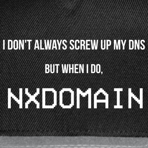 I Don't Always Screw Up My DNS...