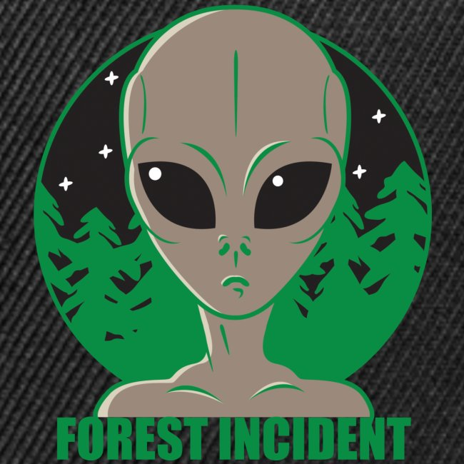 FOREST INCIDENT